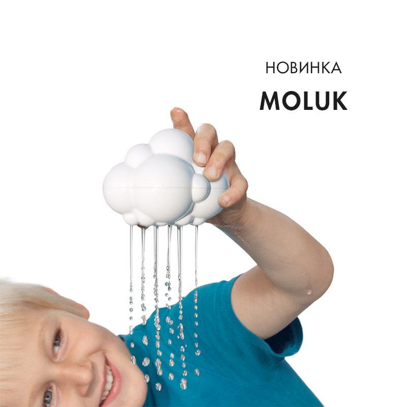 moluk_plui